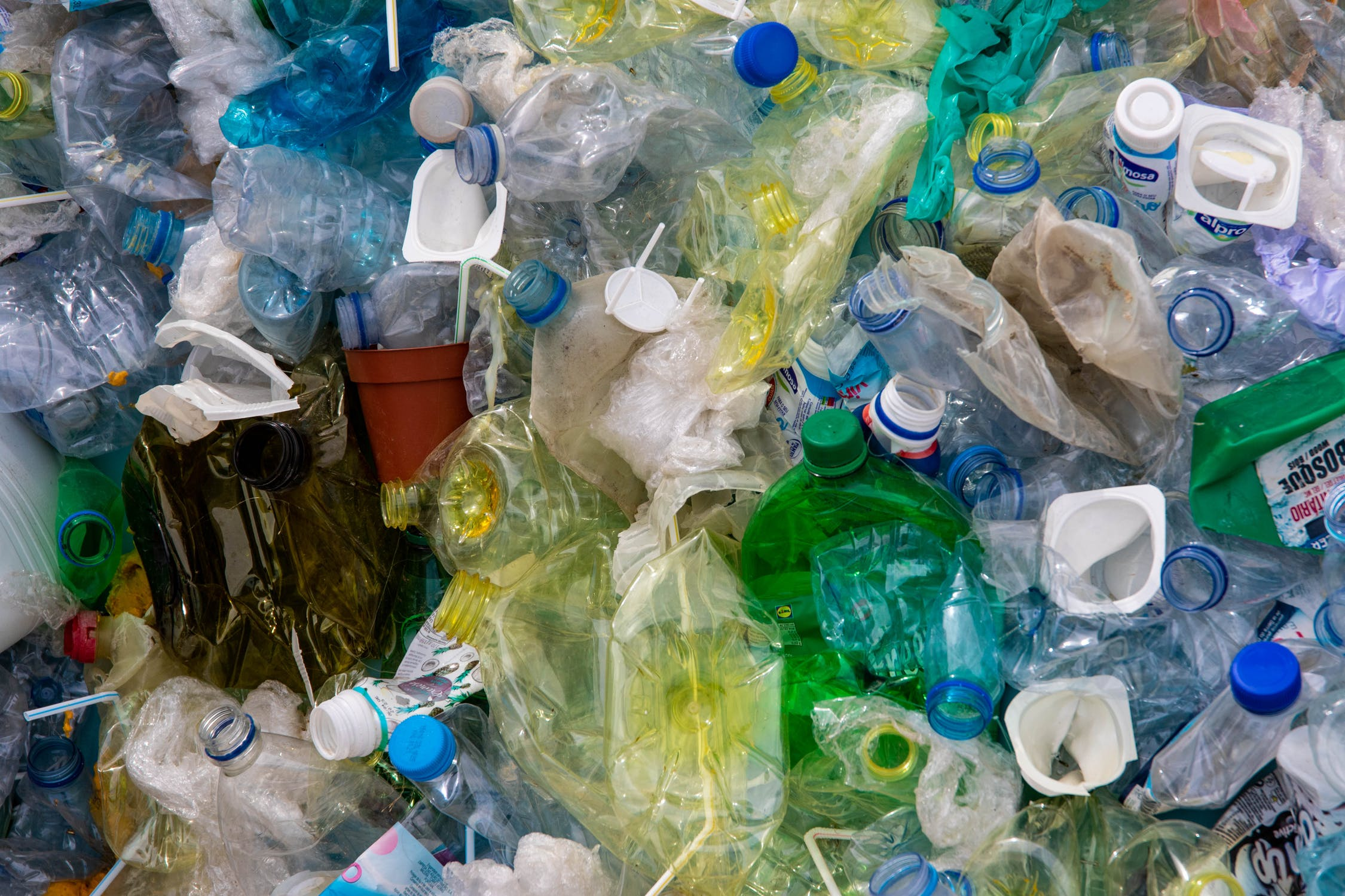 Segregacja odpadów