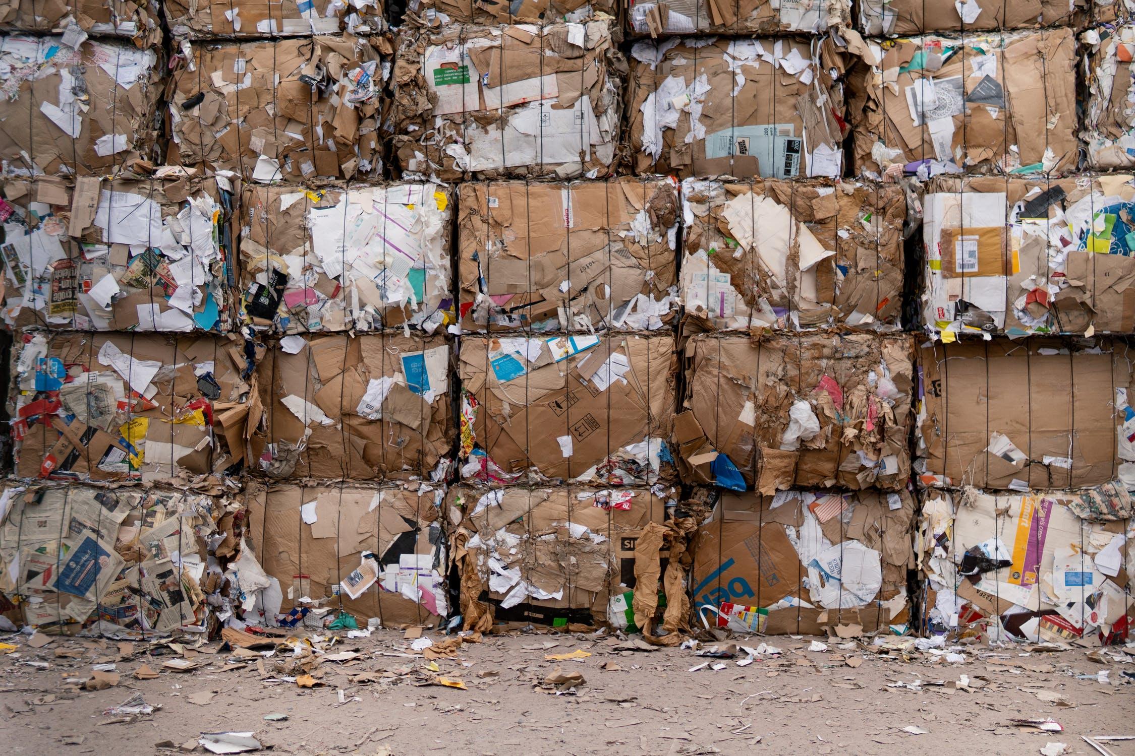 Segregacja odpadów w firmie