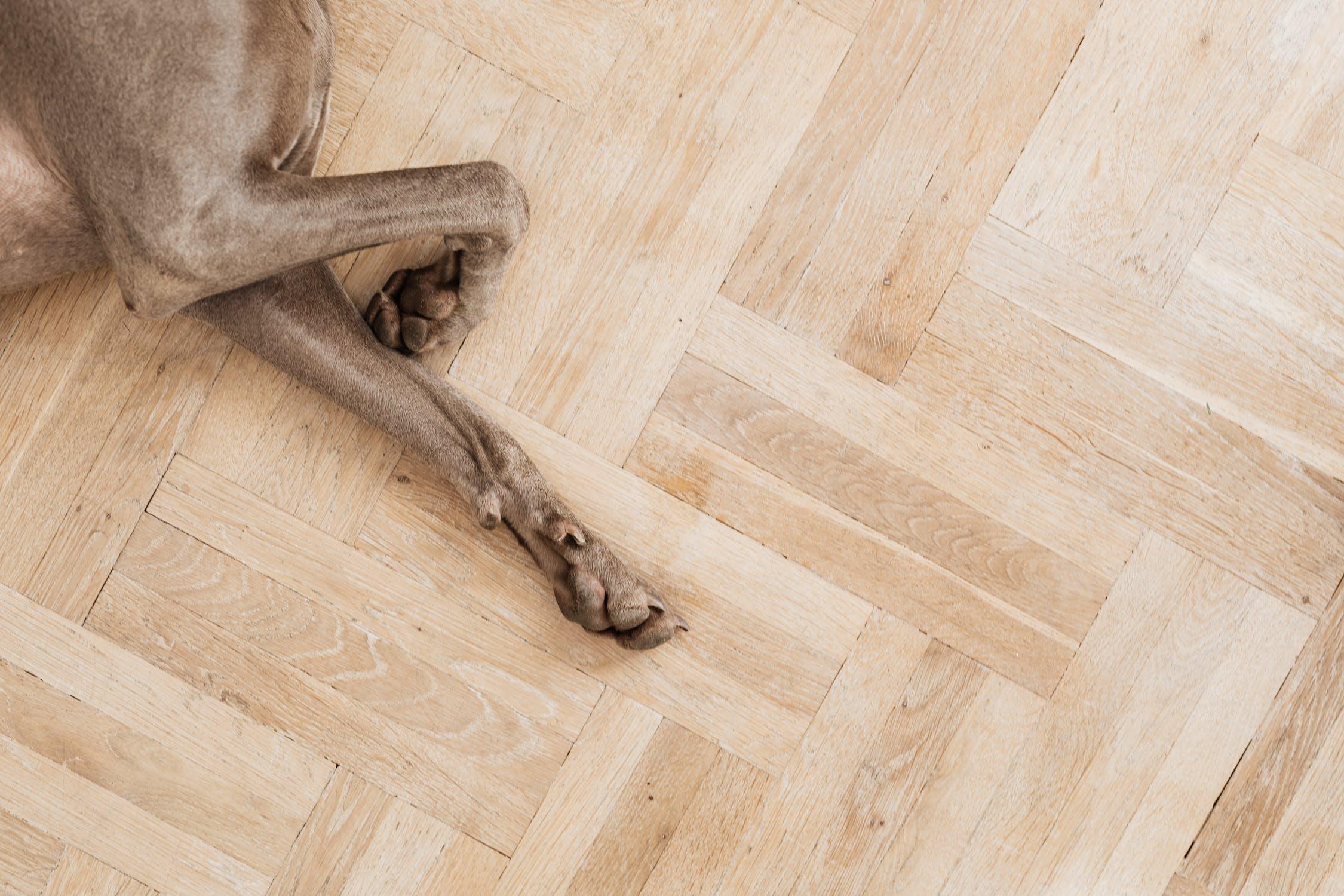 Gdzie wyrzucać panele podłogowe ?
